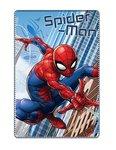 Spiderman plaid