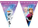 Disney Frozen feestslinger vlaggenlijn Noorderlicht