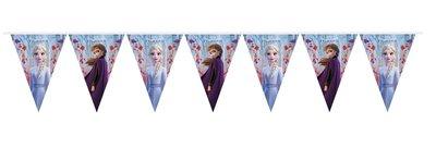 Disney Frozen 2 vlaggenlijn