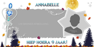 Gepersonaliseerde muurbanner Frozen 2 thema