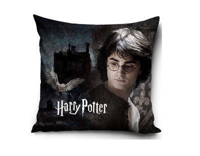 Harry Potter sierkussen gevuld