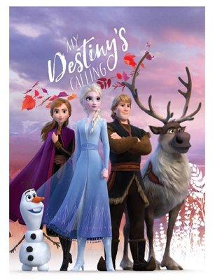 Disney Frozen 2 fleece deken Destiny's calling