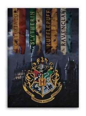 Harry Potter fleece deken - plaid
