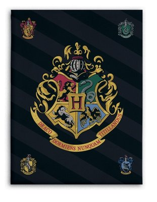 Harry Potter fleece deken - plaid klassen