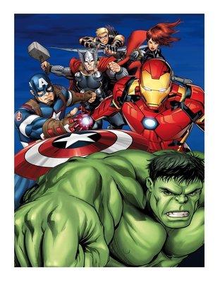 The Avengers helden fleece deken