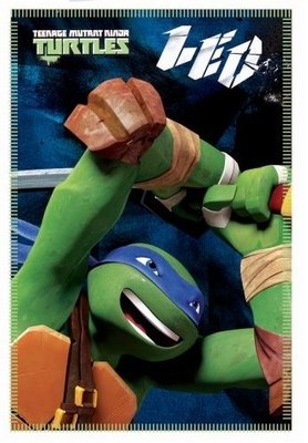Teenage Mutant Ninja Turtles Leonardo fleece deken