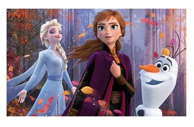 Disney Frozen vloerkleed herfst