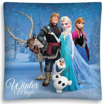 Disney Frozen kussen Winter Magic