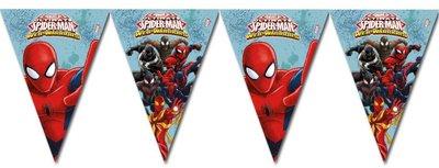 Spiderman feestslinger of vlaggenlijn