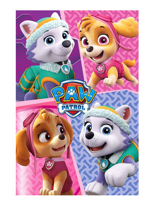 Paw Patrol fleece deken coral met Skye en Everest