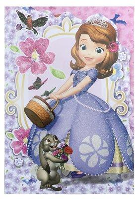 Sofia het Prinsesje wenskaart met envelop
