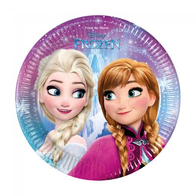 Disney Frozen party bordjes Noorderlicht
