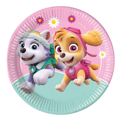 Paw Patrol party bordjes Skye en Everest II