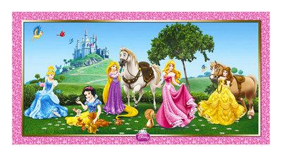 Disney Princess verjaardag banner