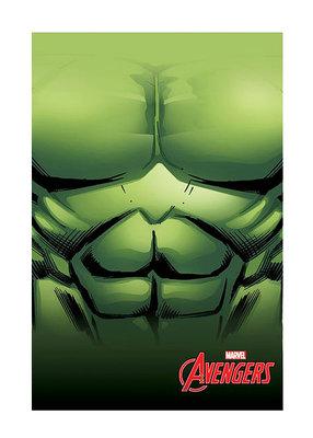 The Avengers fleece deken Hulk