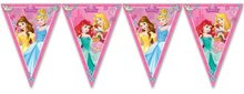 Disney Princess feestslinger of vlaggenlijn