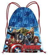 The Avengers Age of Ultron gymtas