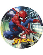 Spiderman party bordjes