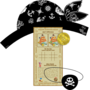 Disney Jake en de Nooitgedachtland piraten schatzoeken